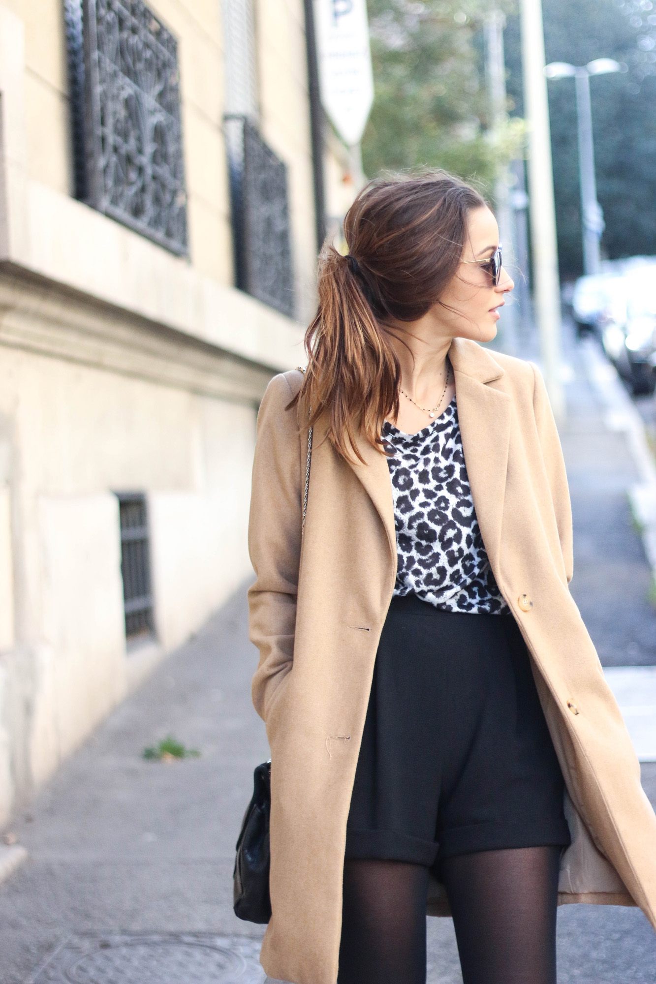 blog-mode-top-leopard